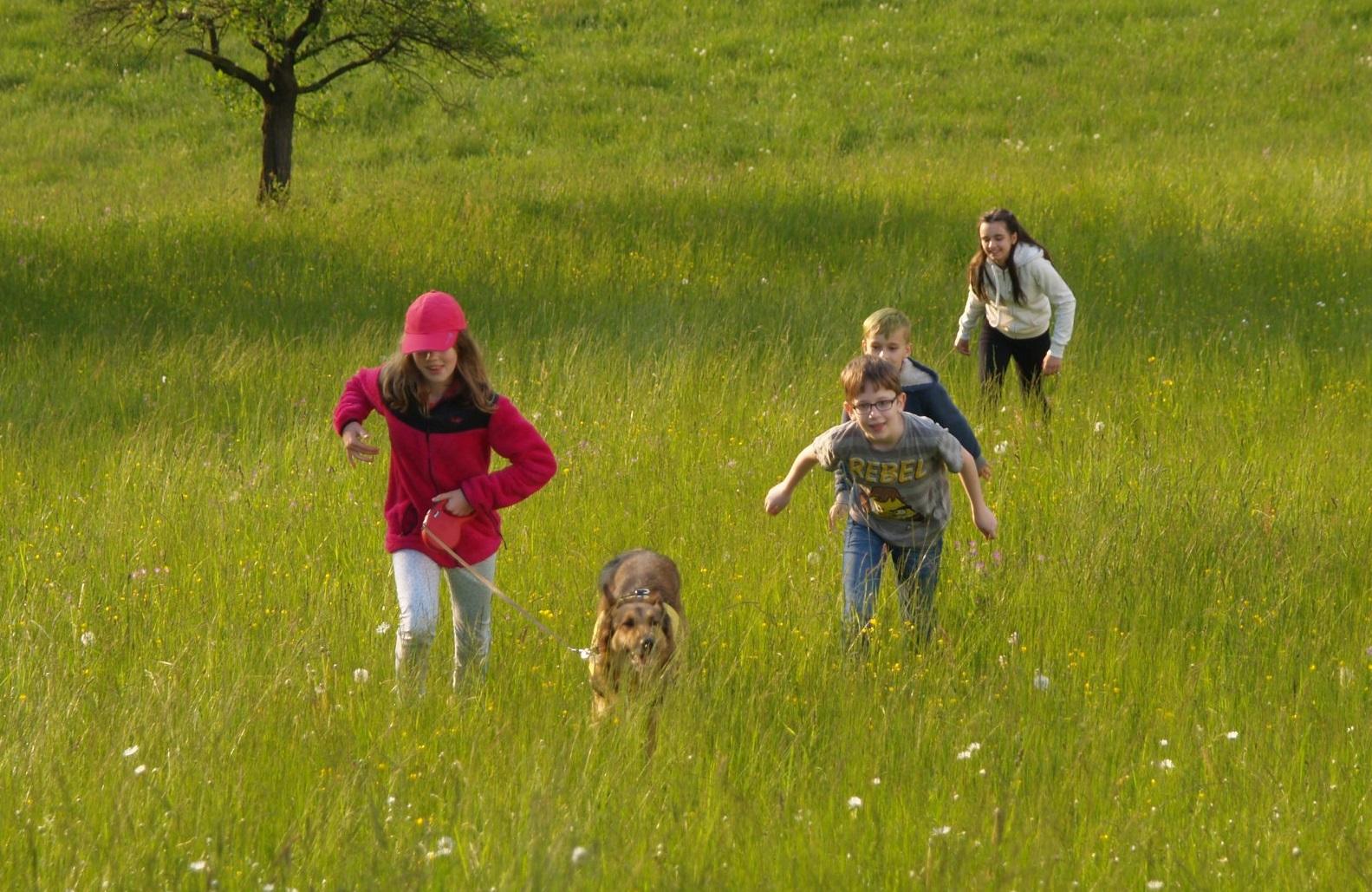 Být sám jiný je těžké aneb Inkluze zpohledu potřeb dětí, které jsou vběžném kolektivu jiné 4