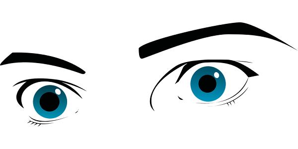 Inkluze očima osobností 6