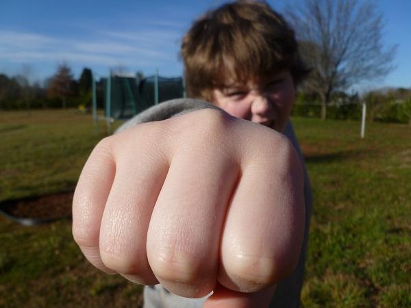 Autisti sú do agresivity tlačení, nevyhľadávajú ju 2