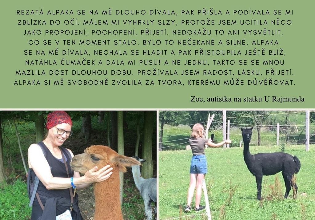 Alpaky - přátelé autistů 2