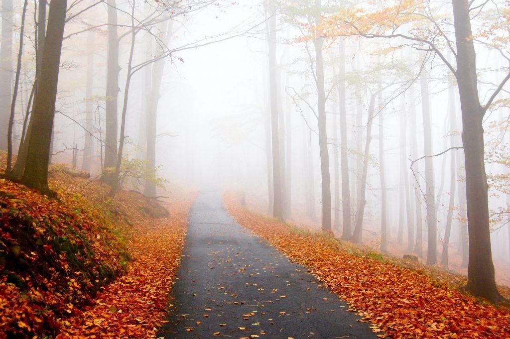 Návod na šťastnější podzim